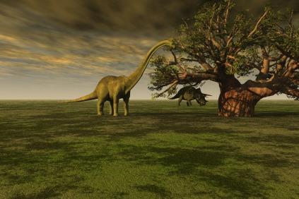 prehistoric-68074_1280