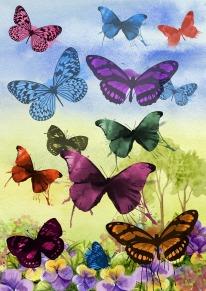butterfly-1112736_1280